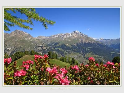 Photo de paysage