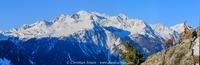 Bouquetins devant le massif des Sarrasins