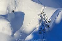 Ambiance de neige