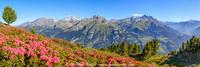 Vallée de la Haute-Maurienne